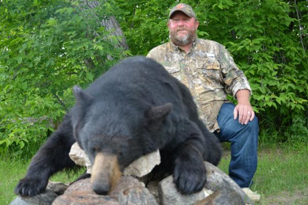 Top 5 Bear hunting Questions #1