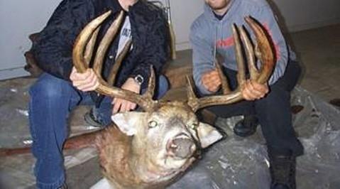 Manitoba Whitetail Deer Hunts