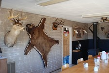 riverside-lodge-wall-mounts