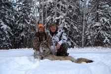 View The Wolf Hunting Gallery
