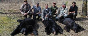 View The Bear Hunting Gallery